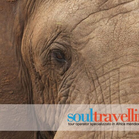 soultravelling-sito-internet